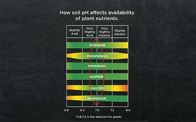 Liming/soil pH